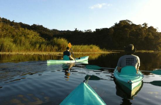 Golfo Dulce - Kayak